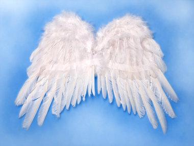 Engelen vleugels maat 1