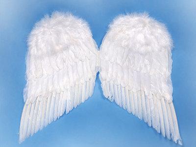 Engelenvleugels maat 2