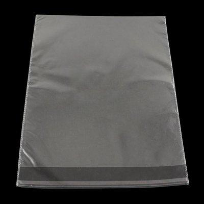 10 cellofaan zakjes 22 x 37 cm